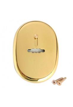 Накладка под сувальдный ключ Apecs DP-S-10-G shutter
